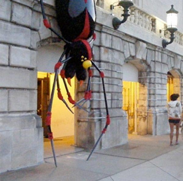 Spider-min