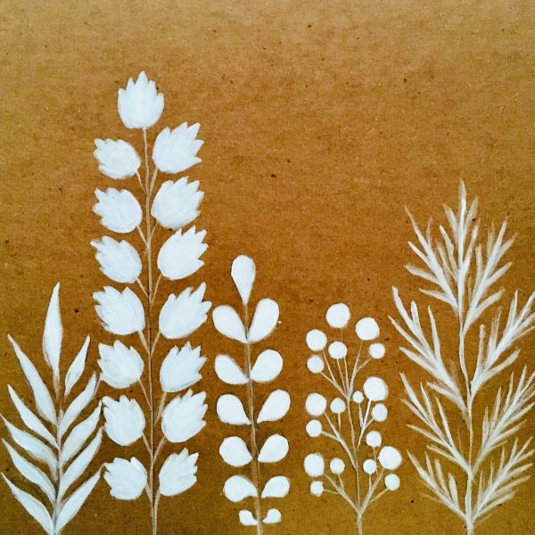 white plants-min